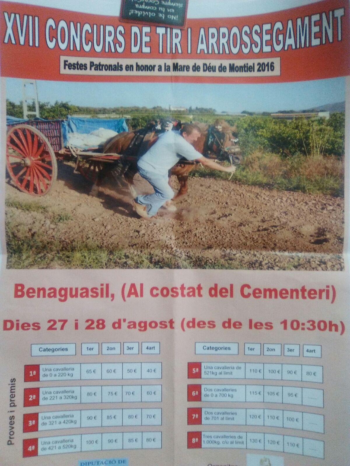Cartel Benaguasil Agosto 2016