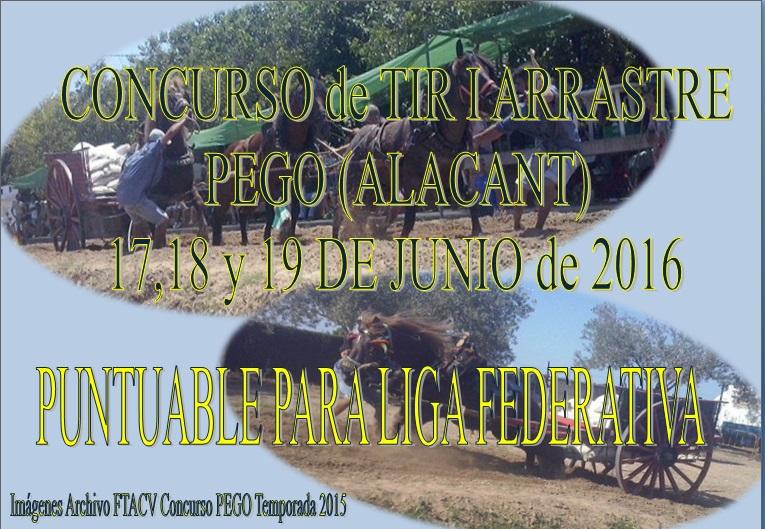 Anuncio Tiro PEGO Junio 2016