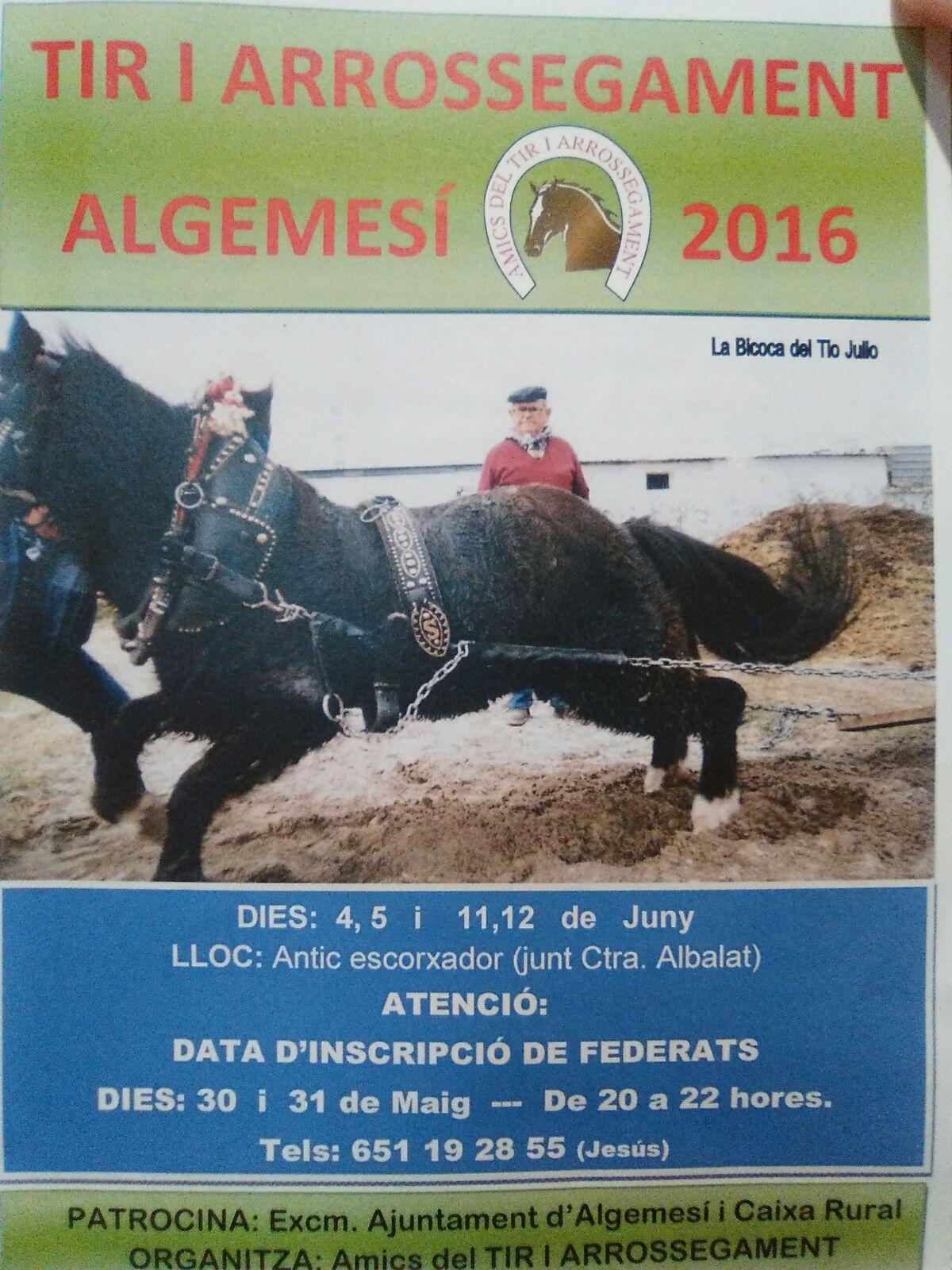 Cartel Algemesi 1