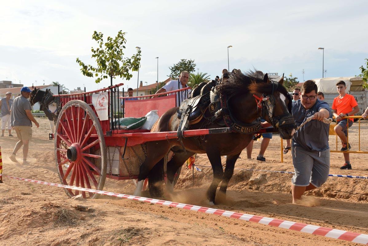 2015-09-26-villanueva-de-castellon_nk2_1151francis-cervero